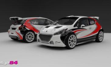 florian-bernardi-208-t16-rallye-sarrians-2016